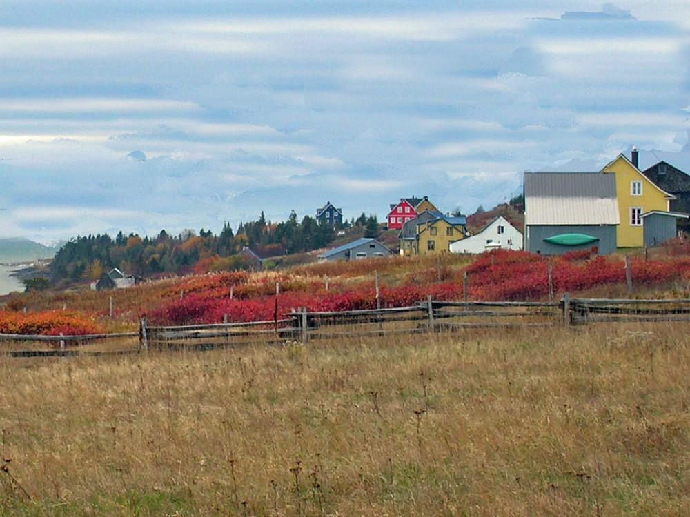Maisons automne bout en haut